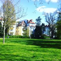 Фото #521813, Магдебург
