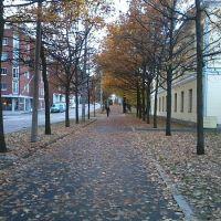 Helsinki autumn, Хельсинки