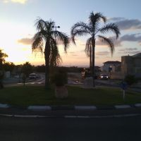 Вечерний Ашкелон, Ашкелон