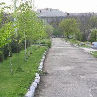 Ул Ленина,дорога к 8 школе, Кара-Балта