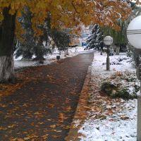 Первый снег-ноябрь 2016, Белоозерск