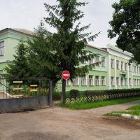 школа, Корма