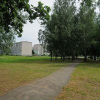 гимназия, бывшая школа №2, Корма