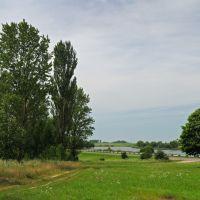 Сырское озеро, Корма