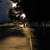 evening walk, Светлогорск