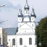 Спасо-Преображенский собор, Слоним