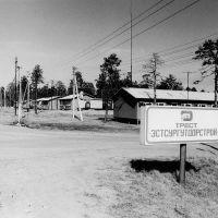 Эстонский посёлок 1987г., Лянтор