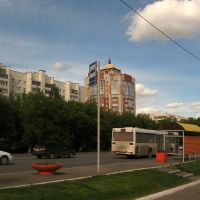 Павловский тракт (1), Барнаул