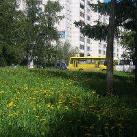 улица Георгиева, Барнаул