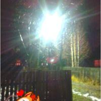 фонарь и черёмуха, Коноша