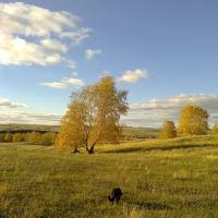 Осенние виды, Кумертау