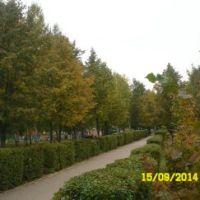парк. Осень, Туймазы
