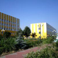 Волоконовская центральная районная больница, Волоконовка