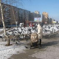 зима, Старый Оскол