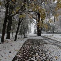 Гордской парк, Трубчевск