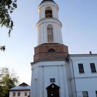 Церковь Иоакима и Анны (1830 г. ). Ныне Дом культуры, Боголюбово