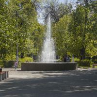 парк КэЗ, Ковров