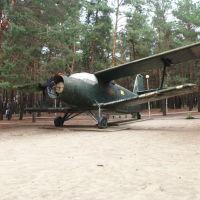 На площадке военной техники в Парке культуры и отдыха. Советский АН-2, Жирновск