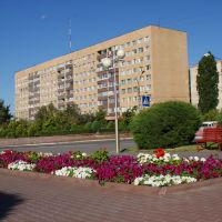 ***, Камышин