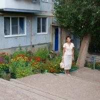 Цветы., Камышин