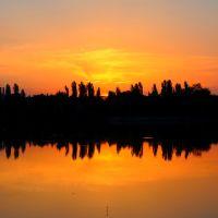 Городской пруд ранним утром, Михайловка