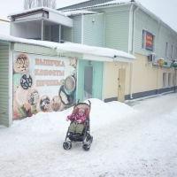 Улица В. Терешковой в Борисоглебске, Борисоглебск
