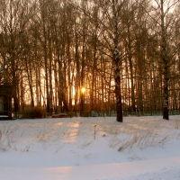 Васильсурск-1-е января 2008г., Васильсурск