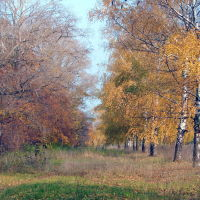 Васильсурск_ул. Советская (у ДО №1)-октябрь 2011г., Васильсурск