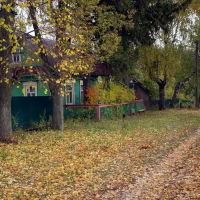 Васильсурск_ул Гоголя-октябрь 2016г,, Васильсурск
