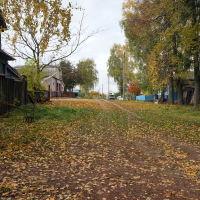 Васильсурск_ул. Гоголя-окт 2016г., Васильсурск