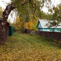 Васильсурск_...и это тоже ул. Гоголя-октябрь 2016г., Васильсурск