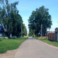 Васильсурск_ул. Ленина-август 2016г., Васильсурск