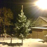 Фото #525030, Керженец
