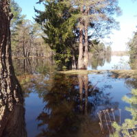 Река Керженец разлив, Керженец