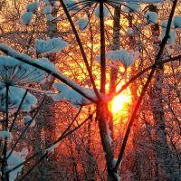 Зимнее солнцестояние, Гаврилов Посад