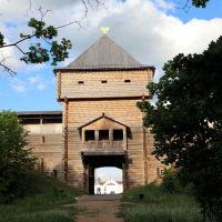 "Лух. Ворота бутафорского ""кремля"" со стороны парка, Лух"