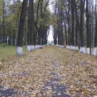 Осенняя аллея старинного городского сада, Шуя