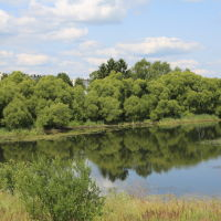 Река Теза возле Филино, Шуя