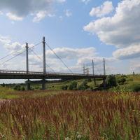 Мост через Тезу возле Филино (на объездной автодороге), Шуя