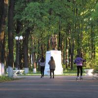 Центральная аллея в парке, Шуя