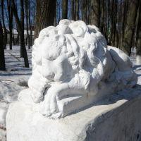 Спящий лев в парке, Шуя