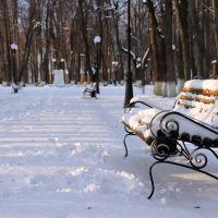 Зимний парк., Шуя