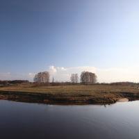 Конский остров., Шуя