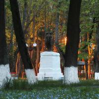 Шуя, городской парк., Шуя