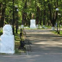 Центральная аллея городского парка., Шуя