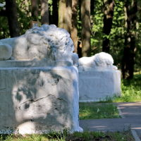 Львы на охране городского парка., Шуя
