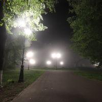 Туман в городском парке., Шуя