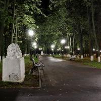 Аллея в городском парке., Шуя