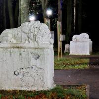 Львы в городском парке., Шуя