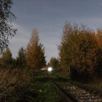 Вечерний поезд в осеннем лесу., Шуя